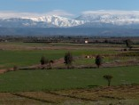 4Ha plot of Titled Land of 1ha plots | rte de Fez km22