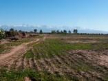 Terrain 2 ha | Titre | Cherifia (Rte Amezmiz) km9