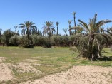 2000M2 Land Plot | Marrakech Palmeraie