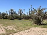 Terrain de 2000M2  | Titre | Marrakech Palmeraie